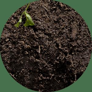 analisi ambientali terreni