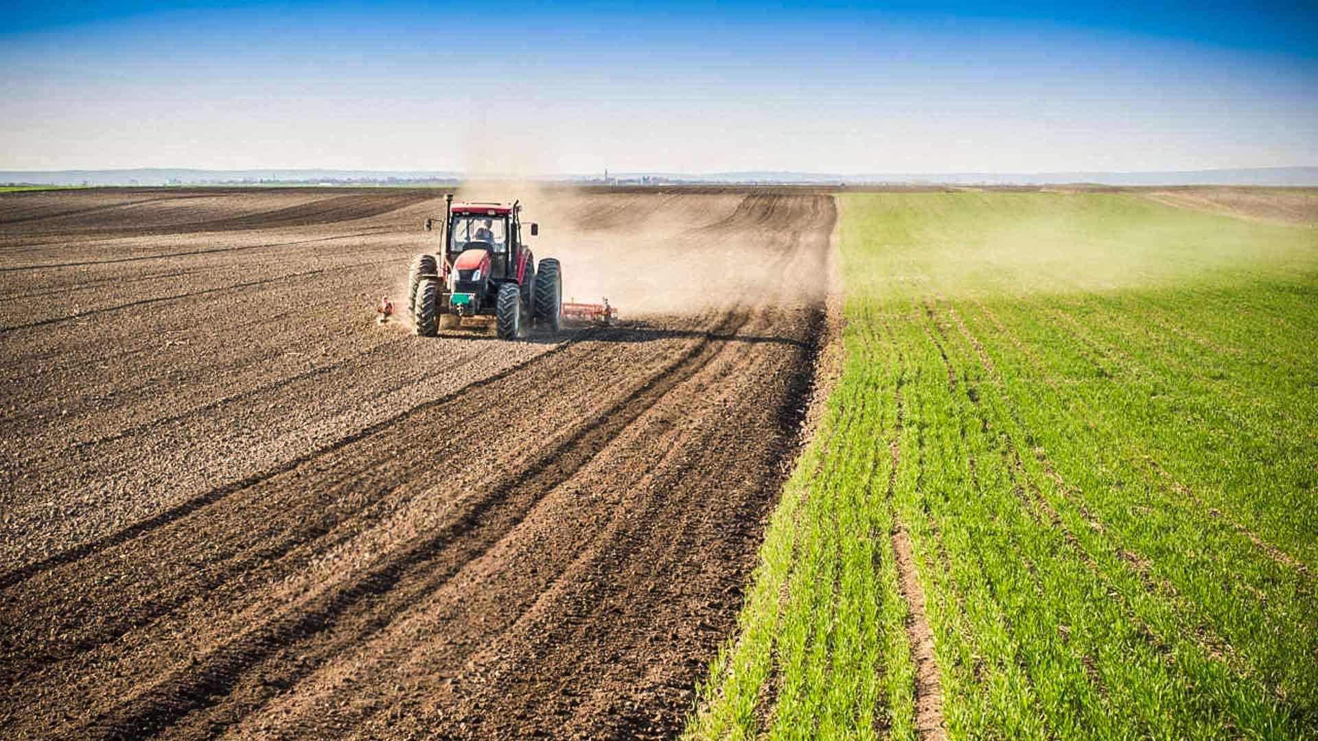 bonifiche sit contaminati aree agricole